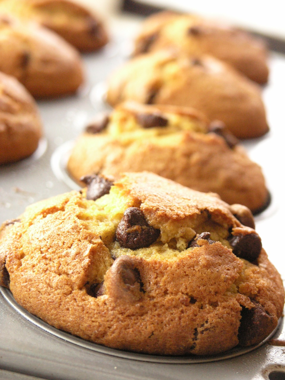 The Best Pumpkin Chocolate Chip Cupcakes with Cream Cheese ...